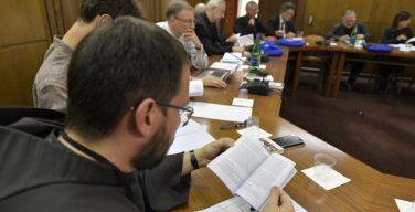 XV Генеральная ассамблея Синода епископов: Семнадцатая Общая конгрегация